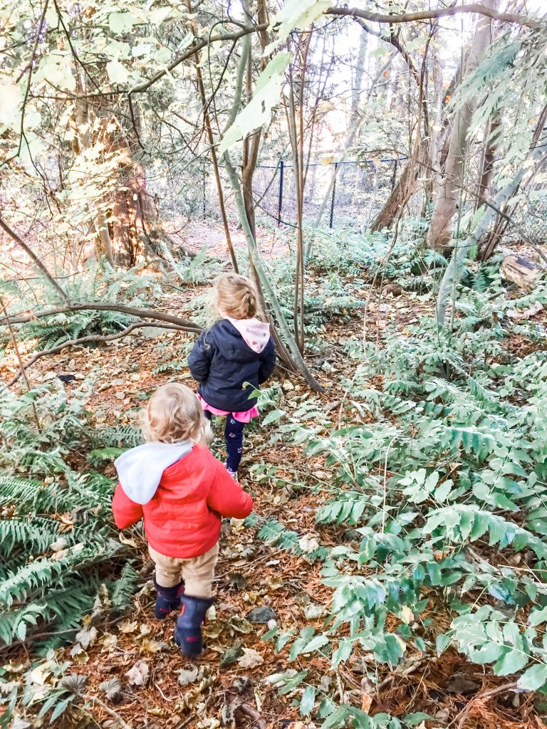 Toddlers roam in the trees at Winter Crescent Park. Winter Crescent Park is one of the best playgrounds for toddlers in South Surrey, BC.