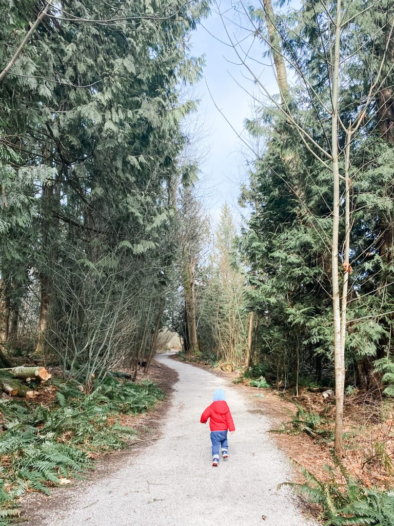 Semiahmoo Trail is one of the best stroller friendly walks in South Surrey, BC.
