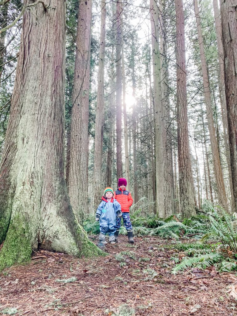 Redwood Park is one of the best stroller friendly walks in South Surrey, BC.