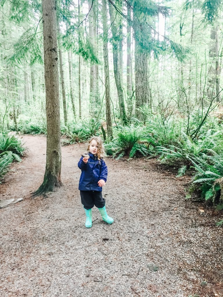 Sunnyside Acres Urban Forest is one of the best stroller friendly walks in South Surrey, BC.