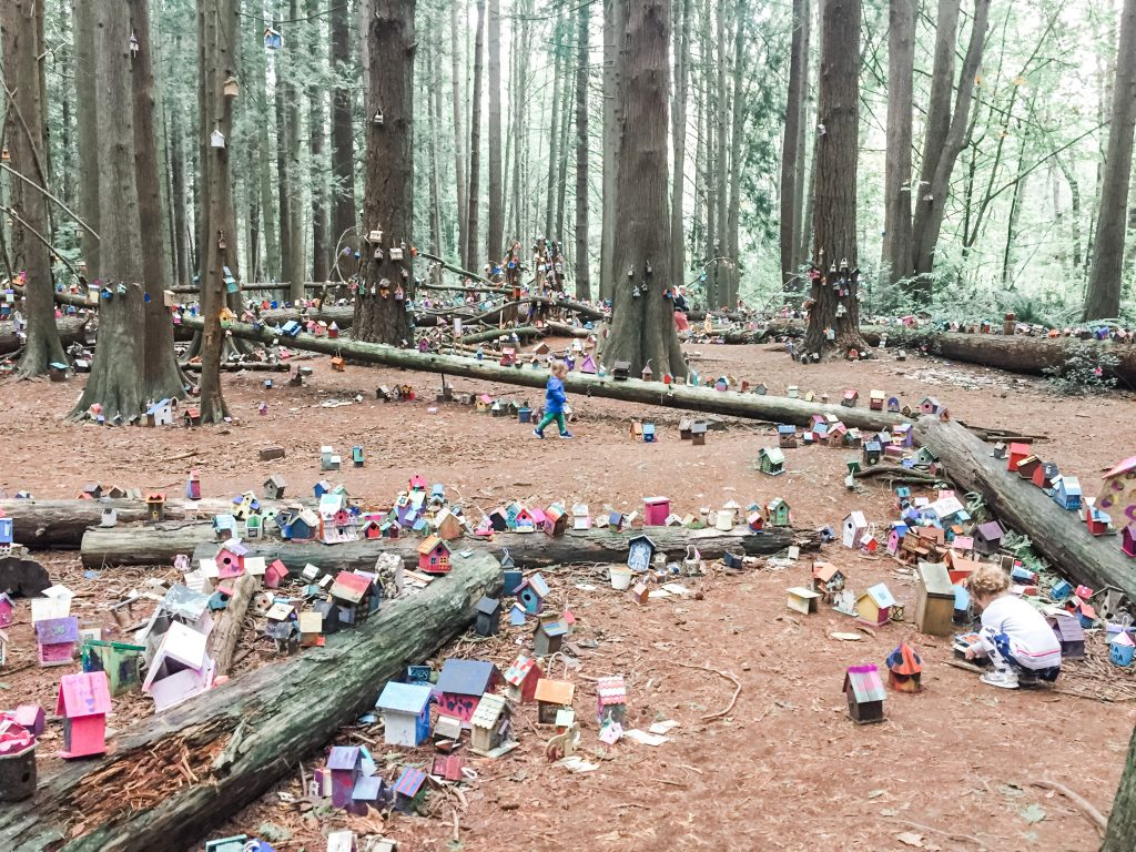 The Fairy Forest in Redwood Park is one of the best stroller friendly walks in South Surrey, BC.