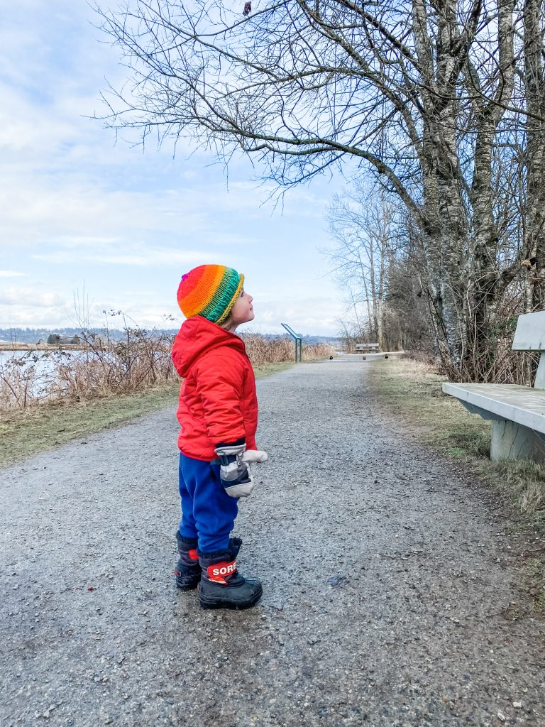 Elgin Heritage Park is one of the best stroller friendly walks in South Surrey, BC.