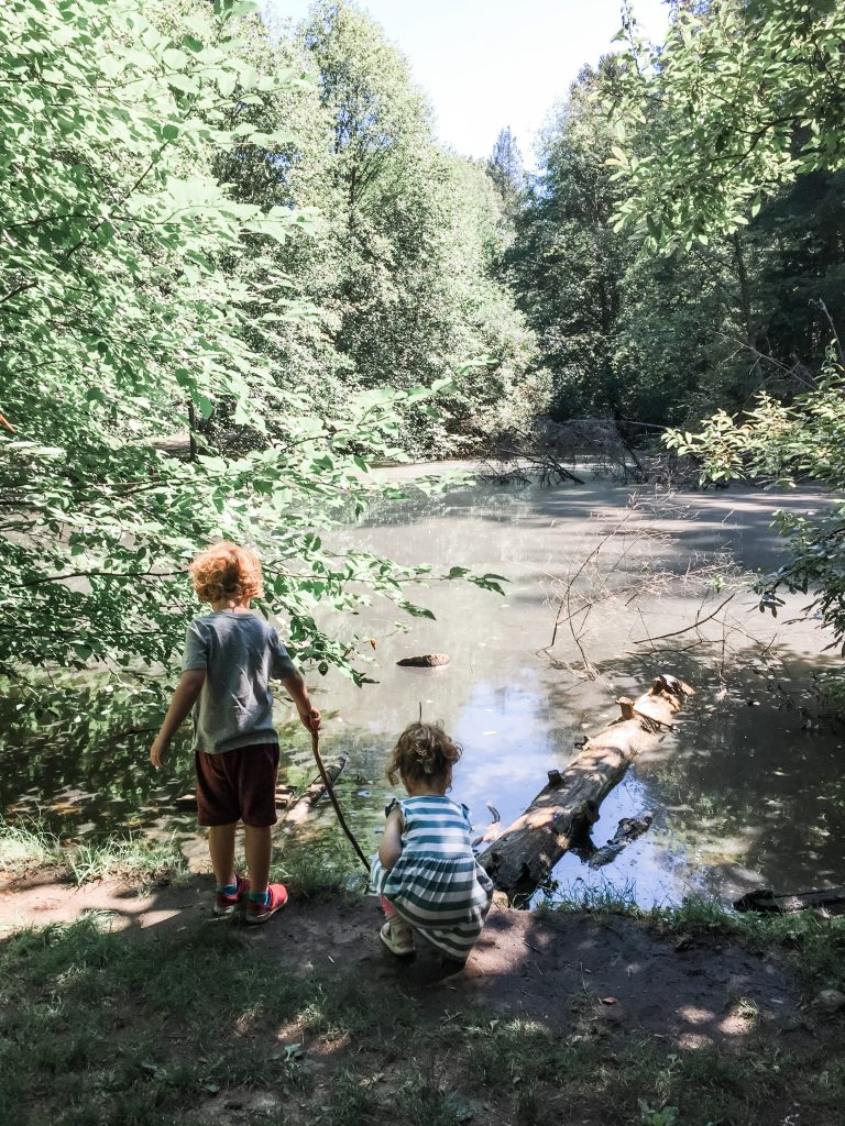 Crescent Park is one of the best stroller friendly walks in South Surrey, BC.